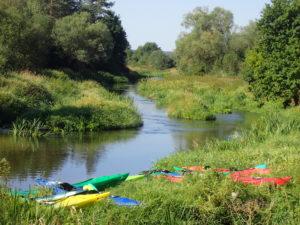Nida - idealna rzeka na rodzinny spływ kajakowy w świętokrzyskim