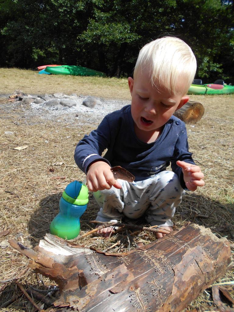 Dziecko zafascynowane drewnem, w którym są ślady po konikach.